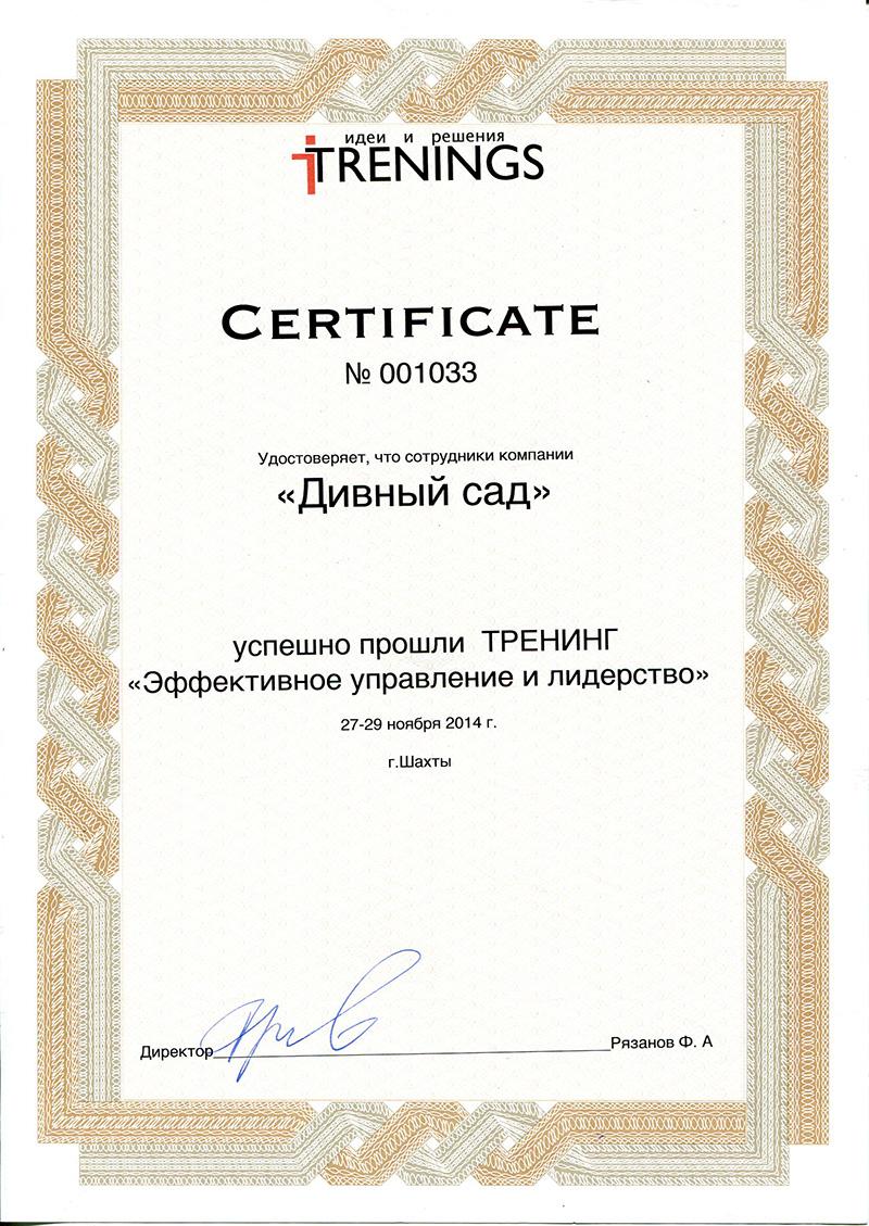 Сертификат тренинга «Эффективное управление и лидерство»
