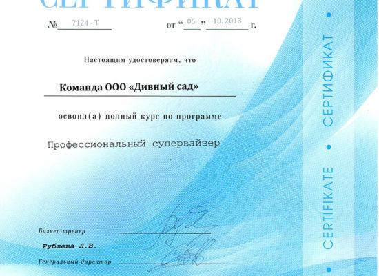 """Сертификат """"Профессиональный супервайзер"""""""