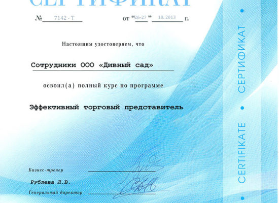 """Сертификат """"Эффективный торговый представитель"""""""