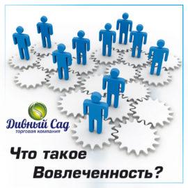 """Вовлеченность персонала компании """"Дивный сад"""""""